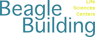 Beagle Building Logo